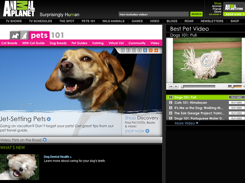 """Animal Planet"" website"