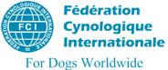 Tarptautinė kinologų federacija