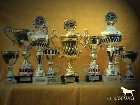 -trofėjai- -NENUORAMOS -Geriausias veislynas'2009